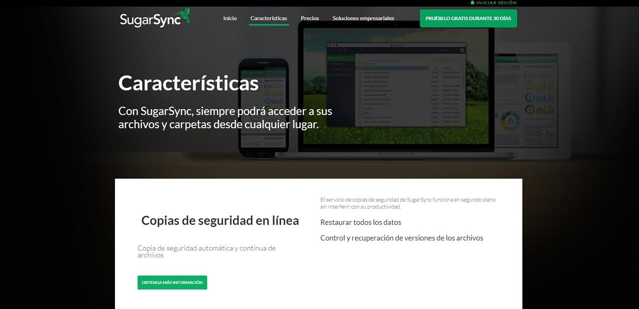 Sugarsync_Functions_ES